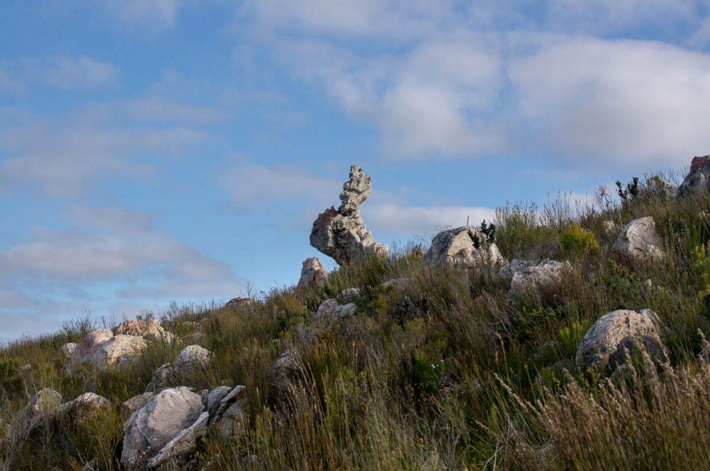Site of Geocache five