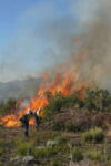 Controlled burn at Phillipskop
