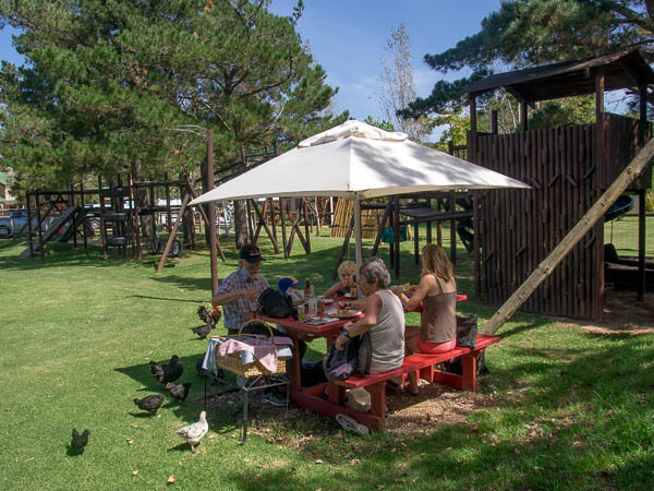 Picnic at Klein River Cheese Factory