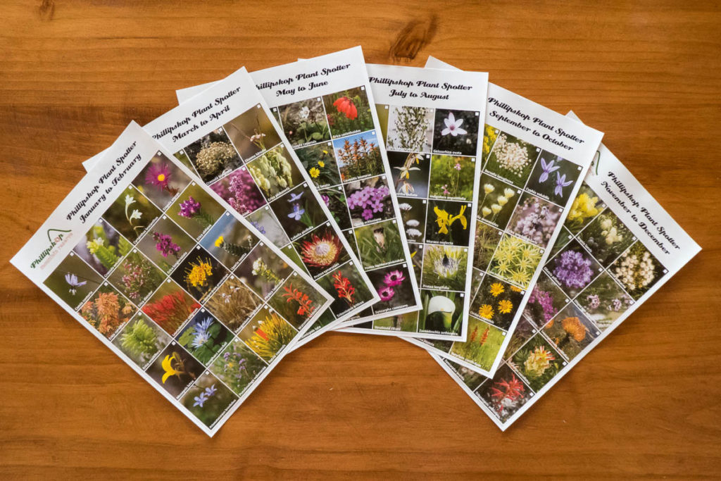Phillipskop Plant Spotter Guides